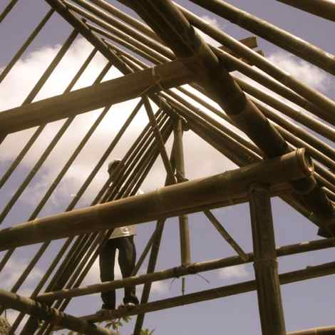 rebuilding... new life