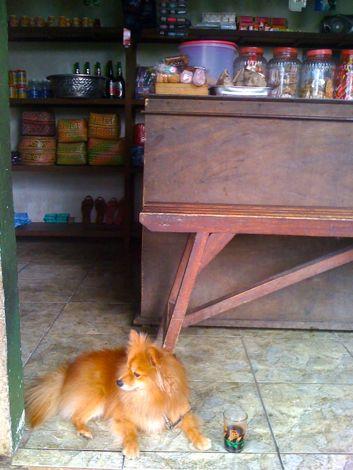 Ibu Kabal's warung, a favourite hangout for Cantik and I