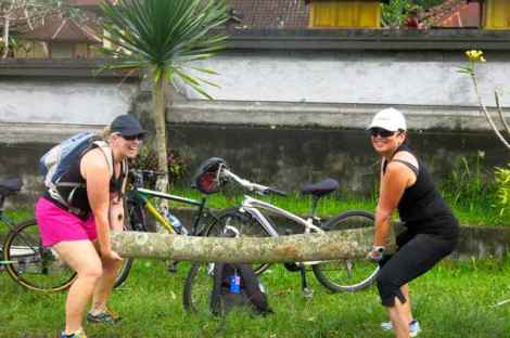 Jo cannot cycle past a pile of coconut logs  - perfect weights opp!